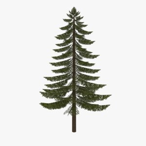 3ds max fir tree