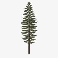fir tree 3ds