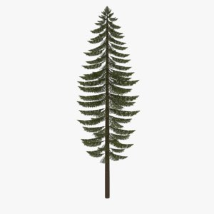 fir tree 3ds