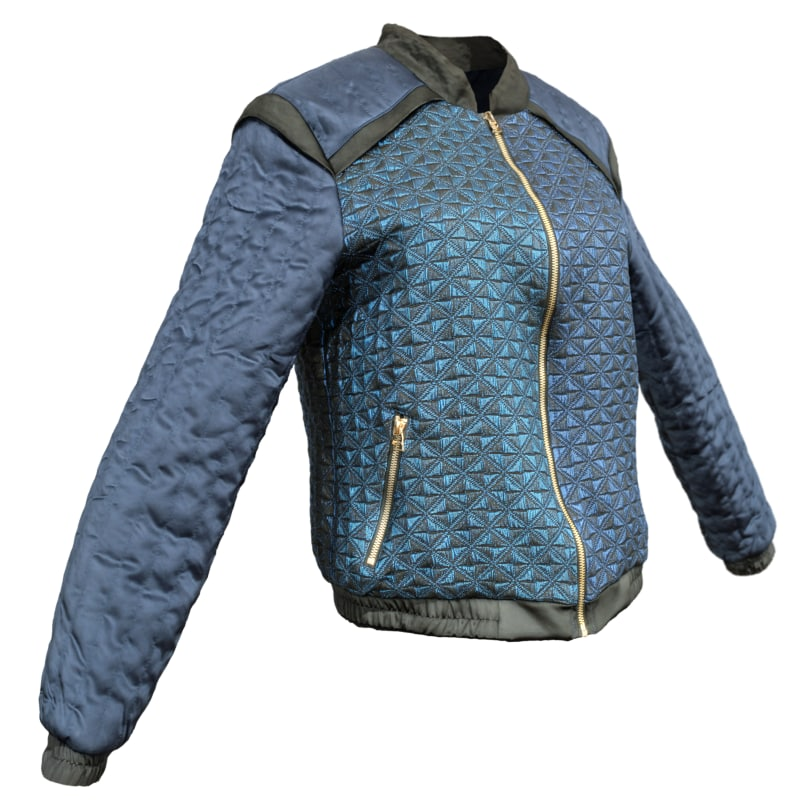 3d model blue gold jacket s