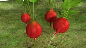 radish plant 3d model