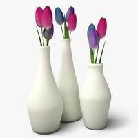 3d tulips design vases model
