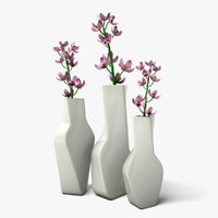 3d model flowers contemporary vases