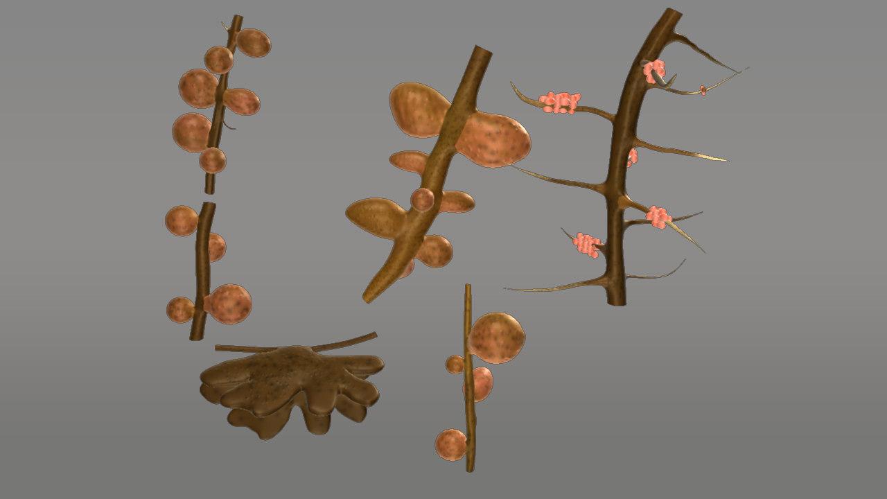 3d root nodules model