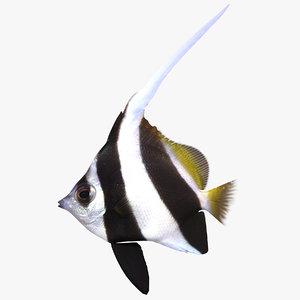 longfin fish 3d 3ds