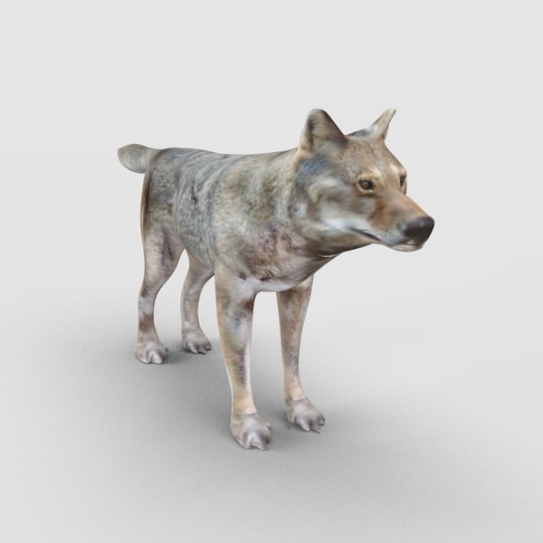 3ds max wolf
