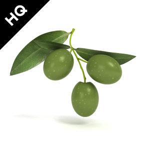 3d olive