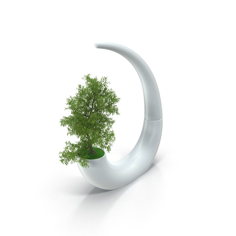 3d max modern planter bonsai