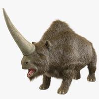 Elasmotherium Fur