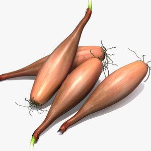 max shallot onion cloves