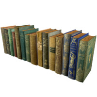 Books Pack 2 Low Poly
