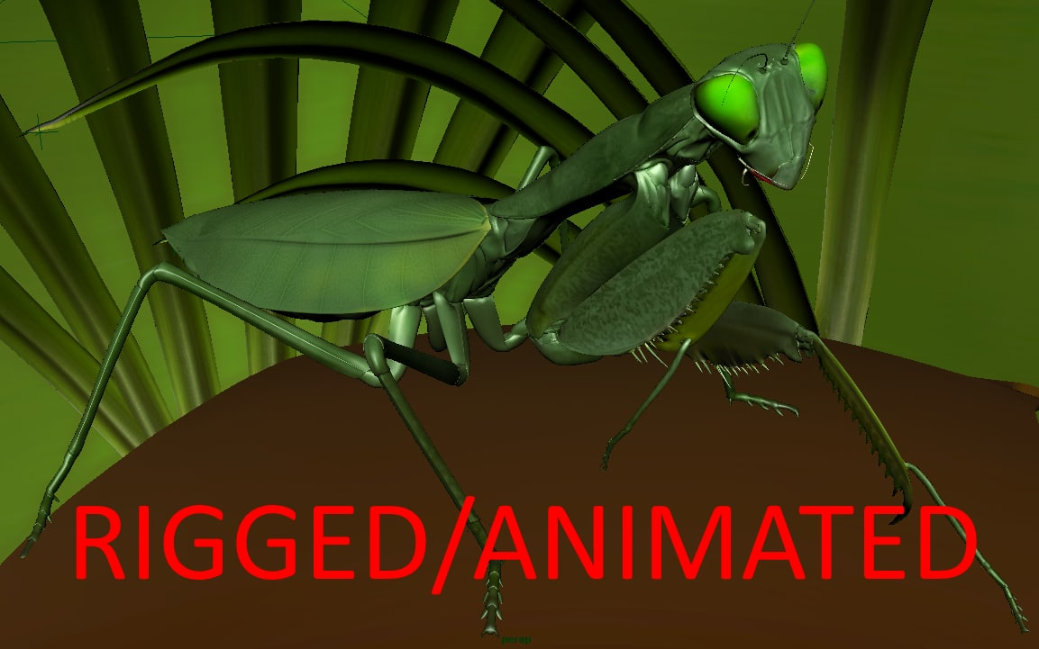 mantis rigged animations 3d ma