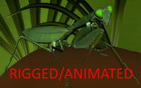 Mantis RIGGED/ANIMATED