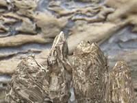 stone desert 3d model