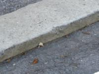 3d model curb 3
