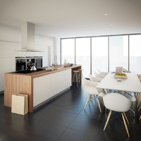 Modern Kitchen Interior 2