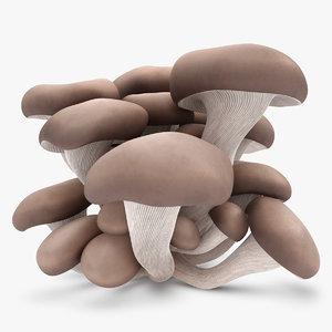 oyster mushroom 3d max