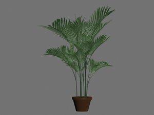 pot palm tree 3d 3ds