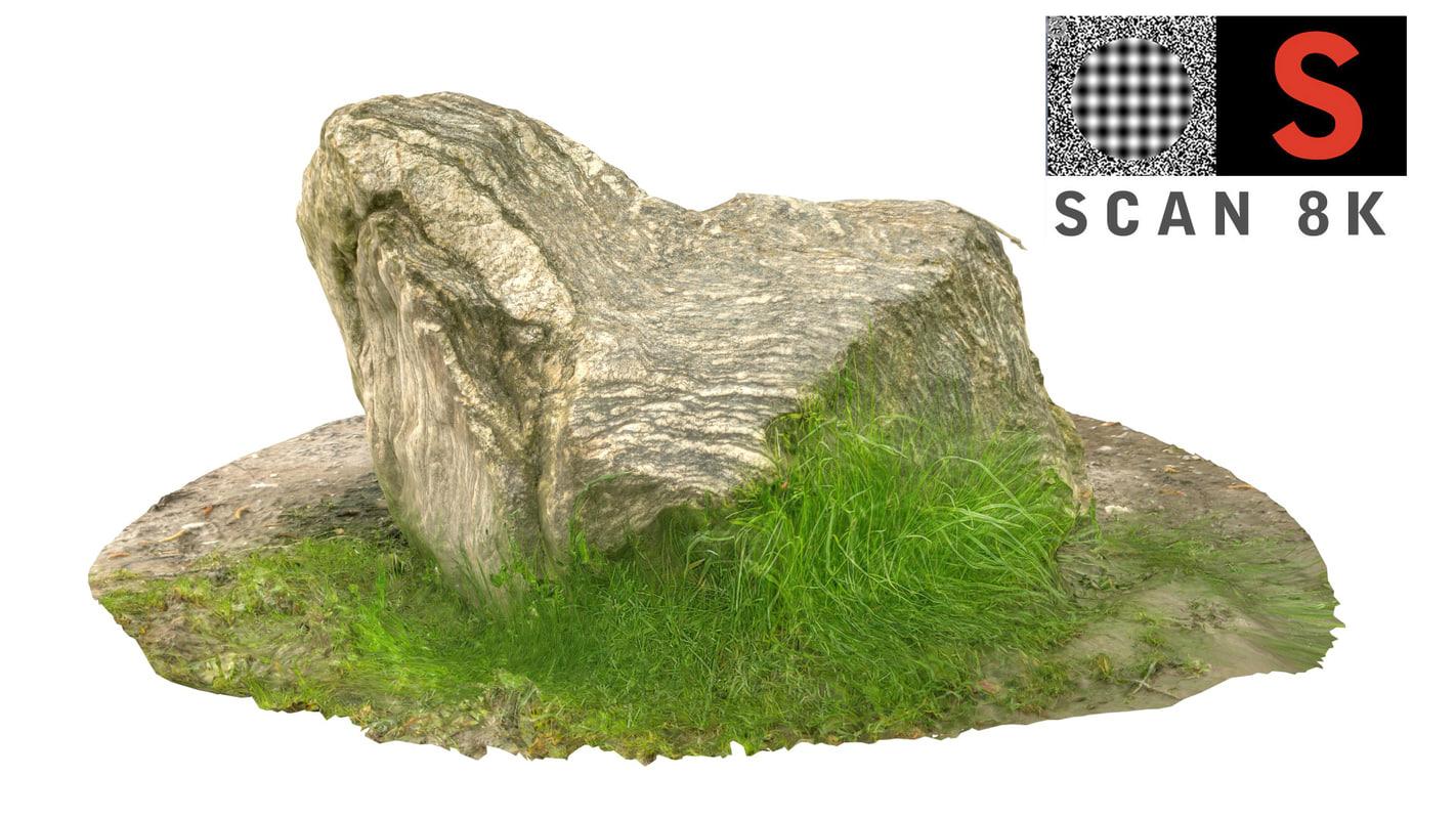 scanned nature 3d model