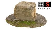 3d model scanned nature
