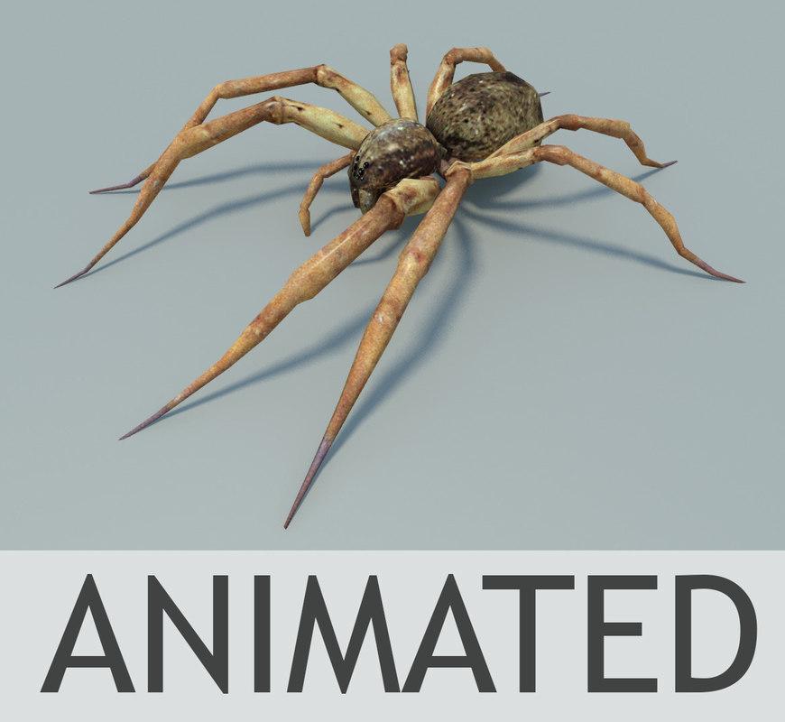 max fishing spider animation