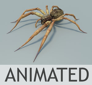 max fishing spider animation