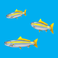 3d model cartoon fish - tiny