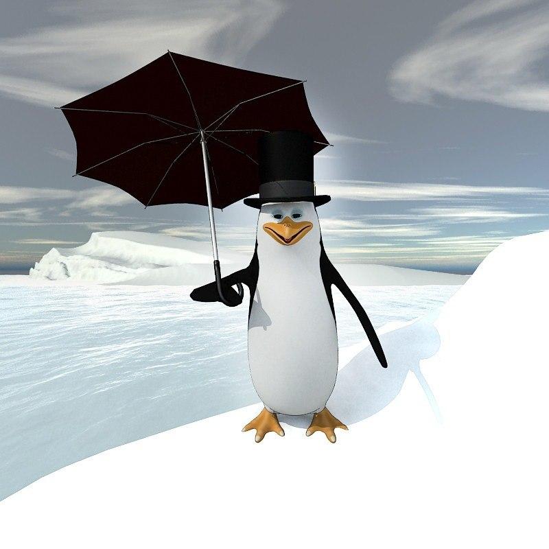 3d pinguin chiko model