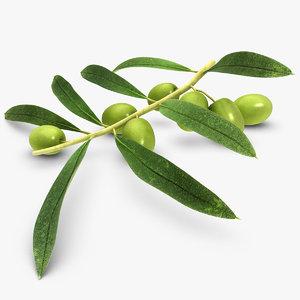 olive green black 3d model