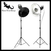 Professional studio strobe with beauty dish