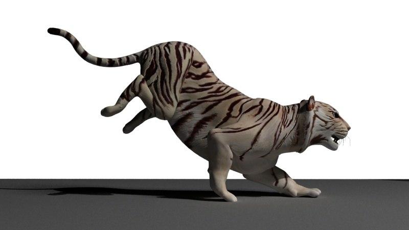 tiger rigged 3d max