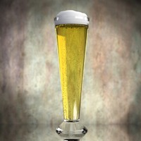 3d beer glass model