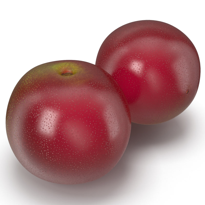 3ds max chokecherry cherry