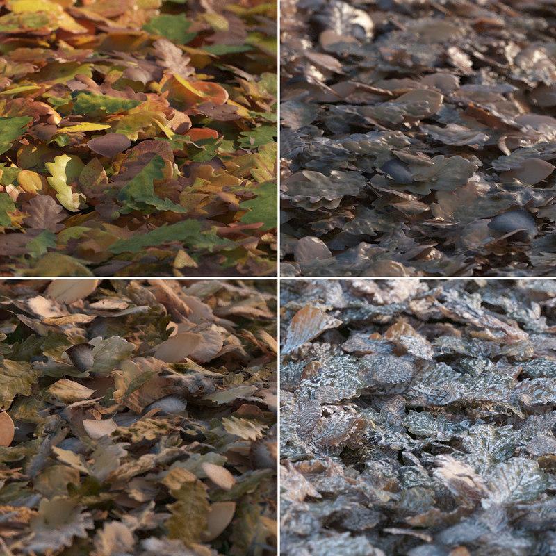 max piles autumn leaves