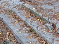 stairs - autumn max