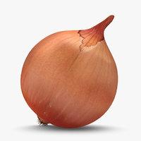 3d model onion used