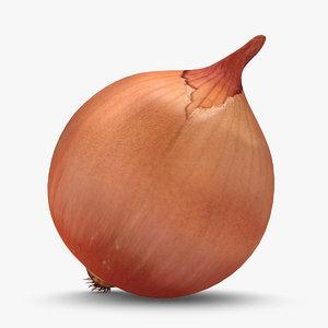 3d model onion used