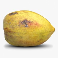 3d papaya 1 model