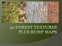 32 Forest Textures & Bump maps