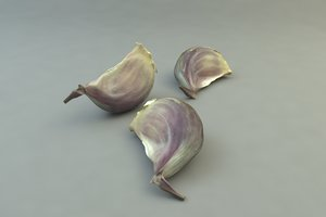 3d model clove garlic