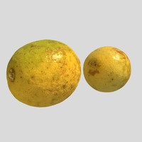 3d lemons fruits