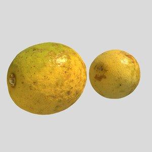3d lemons fruits