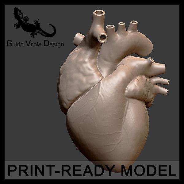 maya accurate printable human heart