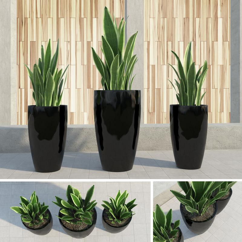 outdoor plants gardening 3d max