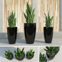 outdoor plants gardening 3d max