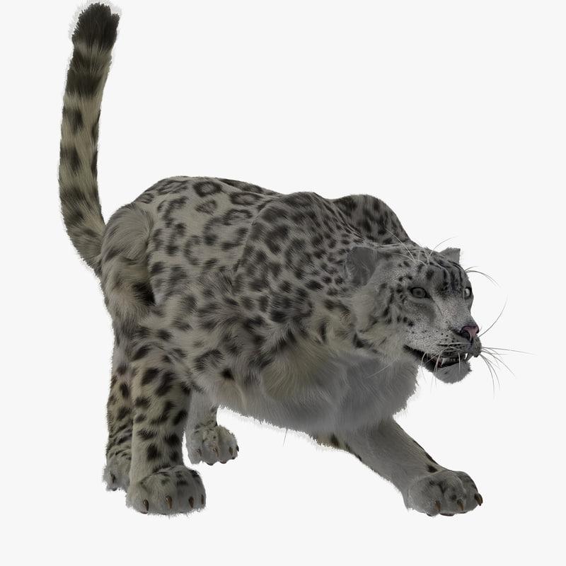 3d snow leopard pose model