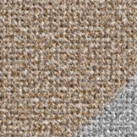 Carpet Texture