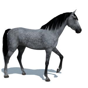 blender horse animations colour 3d 3ds