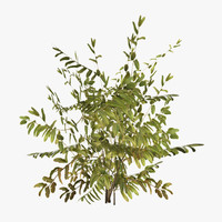 3dsmax plant 01