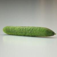 3d cucumber food model